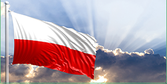 Poland insolvencies Focus: Are restructuring proceedings the remedy?